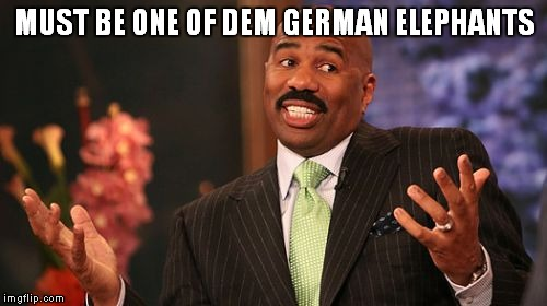 Steve Harvey Meme | MUST BE ONE OF DEM GERMAN ELEPHANTS | image tagged in memes,steve harvey | made w/ Imgflip meme maker