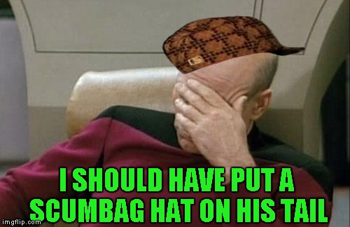 Captain Picard Facepalm Meme | I SHOULD HAVE PUT A SCUMBAG HAT ON HIS TAIL | image tagged in memes,captain picard facepalm,scumbag | made w/ Imgflip meme maker