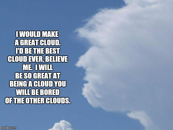 Donald Trump can be anything.   Trust him. | I WOULD MAKE A GREAT CLOUD. I'D BE THE BEST CLOUD EVER, BELIEVE ME.  I WILL BE SO GREAT AT BEING A CLOUD YOU WILL BE BORED OF THE OTHER CLOU | image tagged in cloud,trump | made w/ Imgflip meme maker