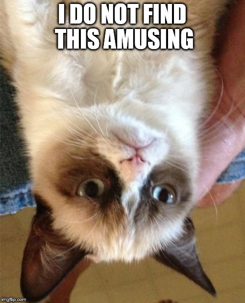 Extra Grumpy Cat | I DO NOT FIND THIS AMUSING | image tagged in grumpy cat,upside down,blood rush,falling asleep listening to a webinar,too tired to know if its actually funny | made w/ Imgflip meme maker