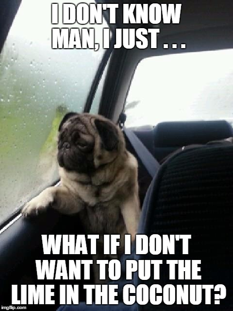 Introspective Pug | I DON'T KNOW MAN, I JUST . . . WHAT IF I DON'T WANT TO PUT THE LIME IN THE COCONUT? | image tagged in introspective pug,meme,memes,lime,coconut,decisions | made w/ Imgflip meme maker