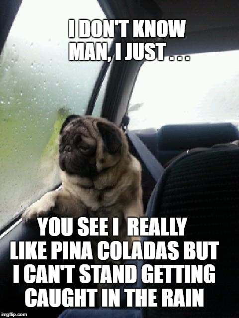 I DON'T KNOW MAN, I JUST . . . YOU SEE I  REALLY LIKE PINA COLADAS BUT I CAN'T STAND GETTING CAUGHT IN THE RAIN | made w/ Imgflip meme maker