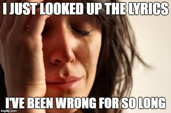 First World Problems Meme | I JUST LOOKED UP THE LYRICS I'VE BEEN WRONG FOR SO LONG | image tagged in memes,first world problems | made w/ Imgflip meme maker