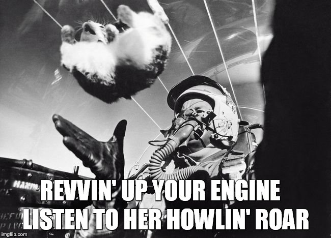 First weightlessness tests using cats  |  LISTEN TO HER HOWLIN' ROAR; REVVIN' UP YOUR ENGINE | image tagged in danger zone,cats,fighter jet,memes,funny memes,meme | made w/ Imgflip meme maker