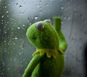 """Résultat de recherche d'images pour """"sad kermit meme windows"""""""