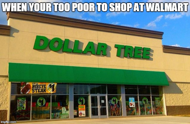 When your Too Poor To Shop At Walmart | WHEN YOUR TOO POOR TO SHOP AT WALMART | image tagged in dollar tree,poor,being poor,funny,funny memes,memes | made w/ Imgflip meme maker