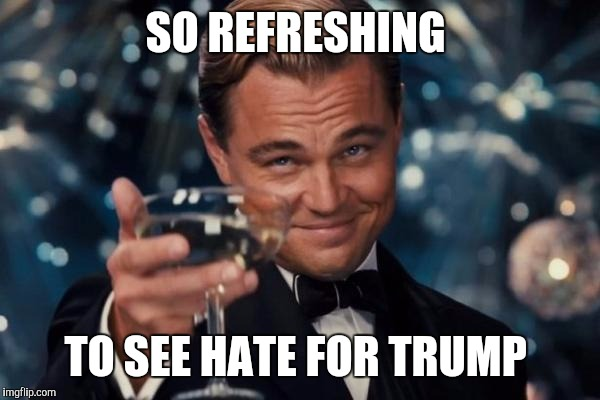 Leonardo Dicaprio Cheers Meme | SO REFRESHING TO SEE HATE FOR TRUMP | image tagged in memes,leonardo dicaprio cheers | made w/ Imgflip meme maker