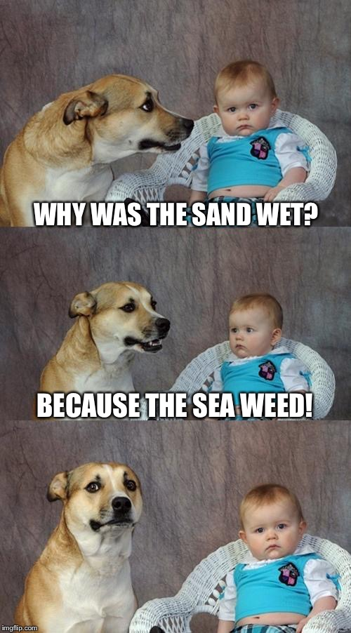 Dad Joke Dog Meme | WHY WAS THE SAND WET? BECAUSE THE SEA WEED! | image tagged in memes,dad joke dog | made w/ Imgflip meme maker
