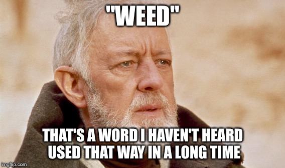 """WEED"" THAT'S A WORD I HAVEN'T HEARD USED THAT WAY IN A LONG TIME 