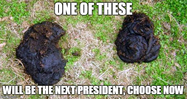 Two Turds for President | ONE OF THESE WILL BE THE NEXT PRESIDENT, CHOOSE NOW | image tagged in two turds,memes,hillary clinton 2016,donald trump | made w/ Imgflip meme maker