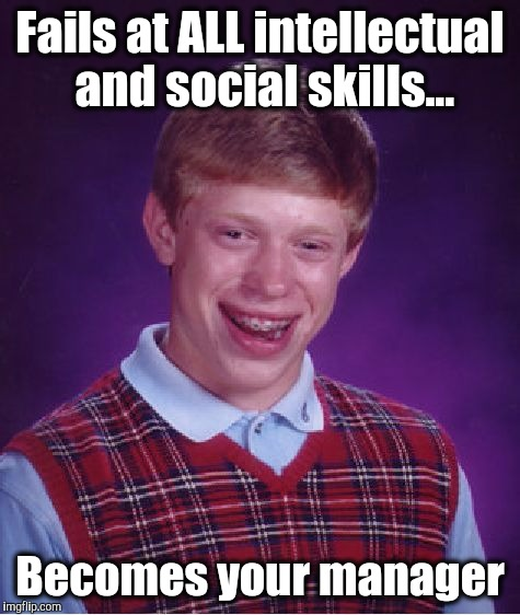 Management | Fails at ALL intellectual and social skills... Becomes your manager | image tagged in memes,bad luck brian,manager,project manager,management | made w/ Imgflip meme maker