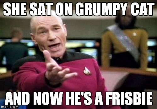 Picard Wtf Meme | SHE SAT ON GRUMPY CAT AND NOW HE'S A FRISBIE | image tagged in memes,picard wtf | made w/ Imgflip meme maker