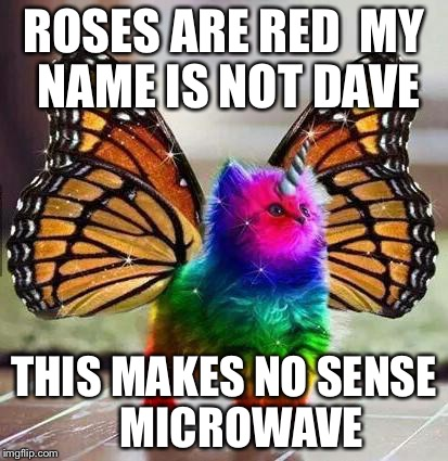 Rainbow unicorn butterfly kitten |  ROSES ARE RED  MY NAME IS NOT DAVE; THIS MAKES NO SENSE     MICROWAVE | image tagged in rainbow unicorn butterfly kitten | made w/ Imgflip meme maker