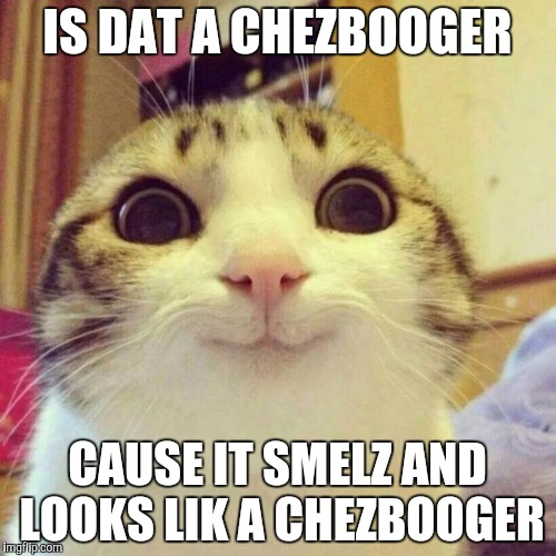 Smiling Cat Meme | IS DAT A CHEZBOOGER CAUSE IT SMELZ AND LOOKS LIK A CHEZBOOGER | image tagged in memes,smiling cat | made w/ Imgflip meme maker