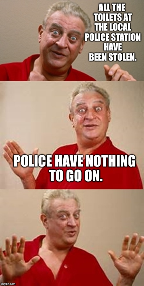 Thanks oil change place.  | ALL THE TOILETS AT THE LOCAL POLICE STATION HAVE BEEN STOLEN. POLICE HAVE NOTHING TO GO ON. | image tagged in bad pun dangerfield | made w/ Imgflip meme maker