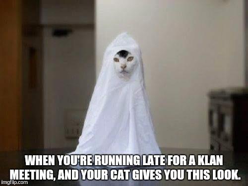 Ku Klux Kat Imgflip