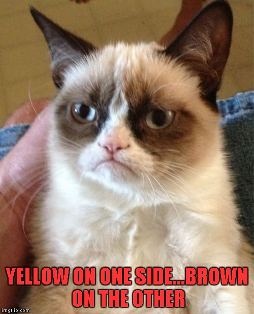 Grumpy Cat Meme | YELLOW ON ONE SIDE...BROWN ON THE OTHER | image tagged in memes,grumpy cat | made w/ Imgflip meme maker