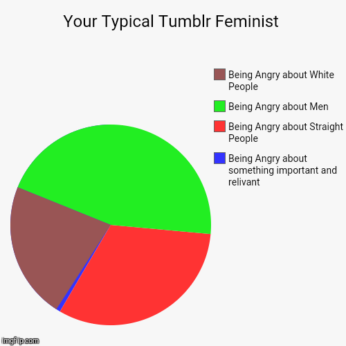Tumblr | Your Typical Tumblr Feminist | Being Angry about something important and relivant, Being Angry about Straight People, Being Angry about Men, | image tagged in funny,memes,pie charts,feminist,tumblr | made w/ Imgflip chart maker