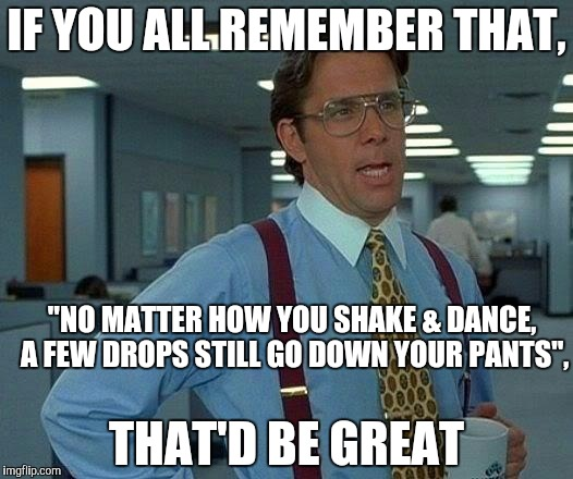 "That Would Be Great Meme | IF YOU ALL REMEMBER THAT, THAT'D BE GREAT ""NO MATTER HOW YOU SHAKE & DANCE, A FEW DROPS STILL GO DOWN YOUR PANTS"", 