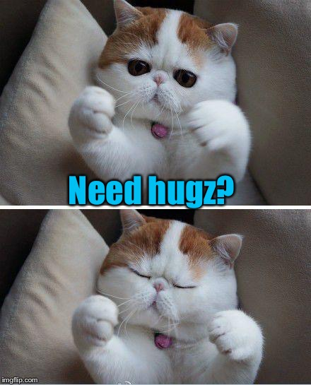 Need hugz? | made w/ Imgflip meme maker