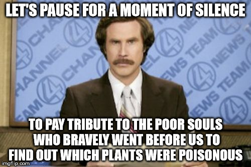 Who Knows, Your Great Great Great Great Grandpa May Be A Hero :) | LET'S PAUSE FOR A MOMENT OF SILENCE TO PAY TRIBUTE TO THE POOR SOULS WHO BRAVELY WENT BEFORE US TO FIND OUT WHICH PLANTS WERE POISONOUS | image tagged in memes,ron burgundy | made w/ Imgflip meme maker