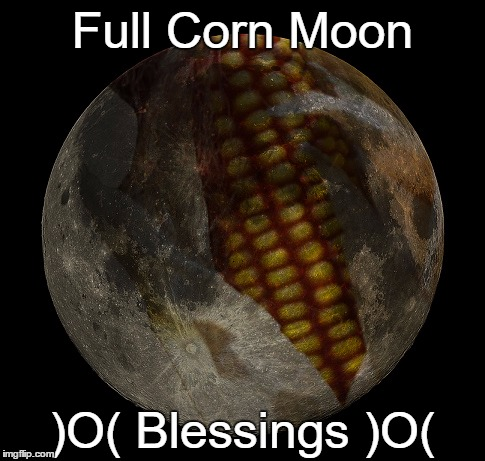 Full Corn Moon | Full Corn Moon )O( Blessings )O( | image tagged in august,paganism,wicca | made w/ Imgflip meme maker
