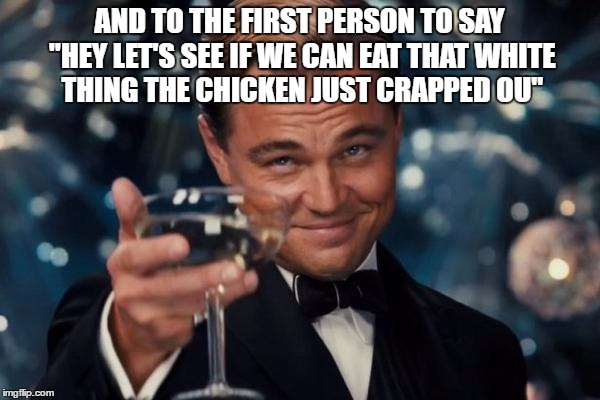 "Leonardo Dicaprio Cheers Meme | AND TO THE FIRST PERSON TO SAY ""HEY LET'S SEE IF WE CAN EAT THAT WHITE THING THE CHICKEN JUST CRAPPED OU"" 