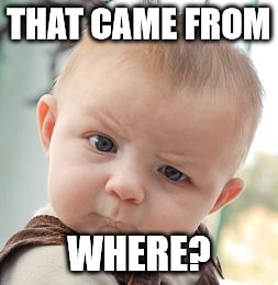 Skeptical Baby Meme | THAT CAME FROM WHERE? | image tagged in memes,skeptical baby | made w/ Imgflip meme maker