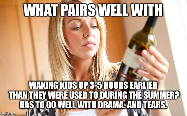 Drinking wine | WHAT PAIRS WELL WITH WAKING KIDS UP 3-5 HOURS EARLIER THAN THEY WERE USED TO DURING THE SUMMER? HAS TO GO WELL WITH DRAMA. AND TEARS. | image tagged in drinking wine | made w/ Imgflip meme maker