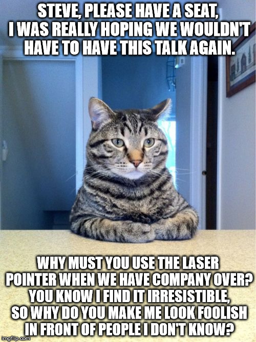 I hate it when you make me look like an idiot | STEVE, PLEASE HAVE A SEAT, I WAS REALLY HOPING WE WOULDN'T HAVE TO HAVE THIS TALK AGAIN. WHY MUST YOU USE THE LASER POINTER WHEN WE HAVE COM | image tagged in memes,take a seat cat,laser pointer,he's never going to catch it,why so serious,disappointment | made w/ Imgflip meme maker