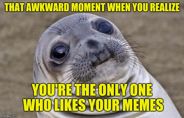 Awkward Moment Sealion Meme | THAT AWKWARD MOMENT WHEN YOU REALIZE YOU'RE THE ONLY ONE WHO LIKES YOUR MEMES | image tagged in memes,awkward moment sealion | made w/ Imgflip meme maker