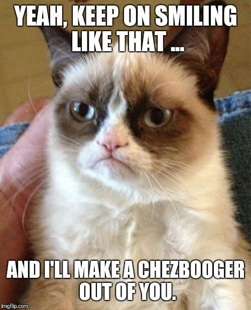 Grumpy Cat Meme | YEAH, KEEP ON SMILING LIKE THAT ... AND I'LL MAKE A CHEZBOOGER OUT OF YOU. | image tagged in memes,grumpy cat | made w/ Imgflip meme maker