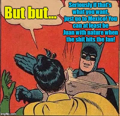 Batman Slapping Robin Meme | But but... Seriously if that's what you want, just go to Mexico! You can at least be Juan with nature when the shit hits the fan! | image tagged in memes,batman slapping robin | made w/ Imgflip meme maker