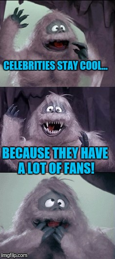 Bumble's Joke |  CELEBRITIES STAY COOL... BECAUSE THEY HAVE A LOT OF FANS! | image tagged in bumble's joke | made w/ Imgflip meme maker