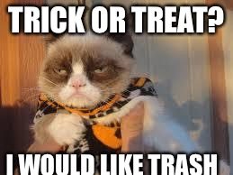 Grumpy Cat Halloween | TRICK OR TREAT? I WOULD LIKE TRASH | image tagged in memes,grumpy cat halloween,grumpy cat | made w/ Imgflip meme maker