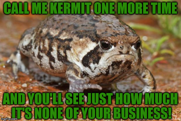 Grumpy Toad | CALL ME KERMIT ONE MORE TIME AND YOU'LL SEE JUST HOW MUCH IT'S NONE OF YOUR BUSINESS! | image tagged in memes,grumpy toad,two can play this game,connery and grumpy toad team up,life is hard for a toad | made w/ Imgflip meme maker