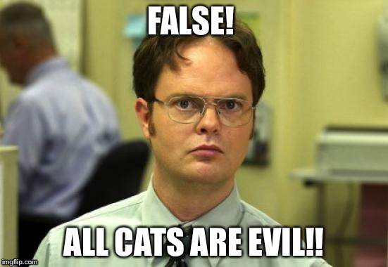 FALSE! ALL CATS ARE EVIL!! | made w/ Imgflip meme maker