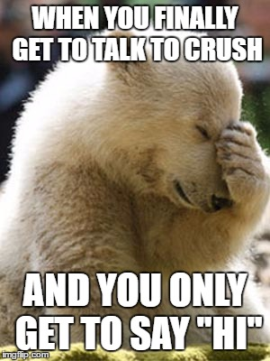 Facepalm Bear |  WHEN YOU FINALLY GET TO TALK TO CRUSH; AND YOU ONLY GET TO SAY ''HI'' | image tagged in memes,facepalm bear | made w/ Imgflip meme maker