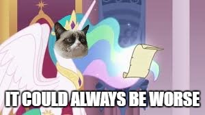 Grumpy Cat Celestia | IT COULD ALWAYS BE WORSE | image tagged in grumpy cat celestia | made w/ Imgflip meme maker