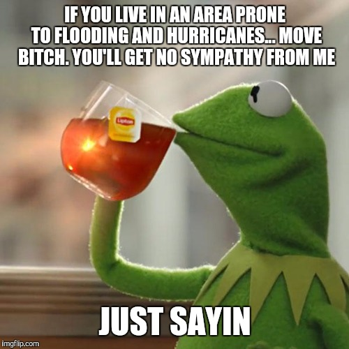 But Thats None Of My Business Meme | IF YOU LIVE IN AN AREA PRONE TO FLOODING AND HURRICANES... MOVE B**CH. YOU'LL GET NO SYMPATHY FROM ME JUST SAYIN | image tagged in memes,but thats none of my business,kermit the frog | made w/ Imgflip meme maker