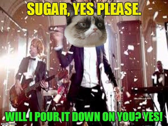 SUGAR, YES PLEASE. WILL I POUR IT DOWN ON YOU? YES! | made w/ Imgflip meme maker