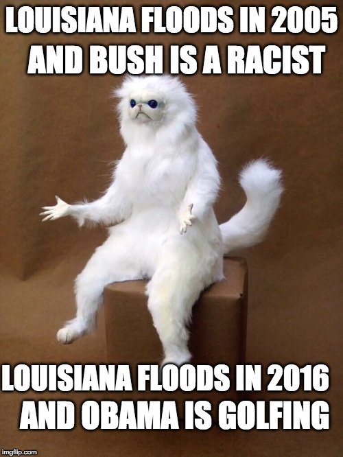 I long for the days when the media just reported the news instead of pick and choose who they favored...  | LOUISIANA FLOODS IN 2005 LOUISIANA FLOODS IN 2016 AND BUSH IS A RACIST AND OBAMA IS GOLFING | image tagged in wtf cat-thing,bush,louisiana,flood,obama,donald trump | made w/ Imgflip meme maker