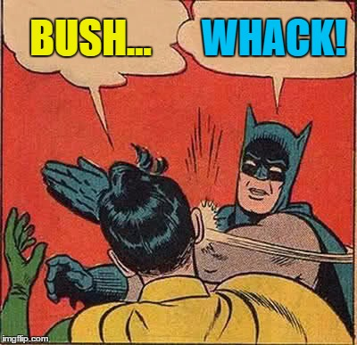Batman Slapping Robin Meme | BUSH... WHACK! | image tagged in memes,batman slapping robin | made w/ Imgflip meme maker