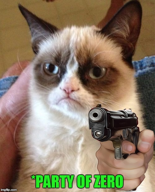 Grumpy Cat Meme | *PARTY OF ZERO | image tagged in memes,grumpy cat | made w/ Imgflip meme maker