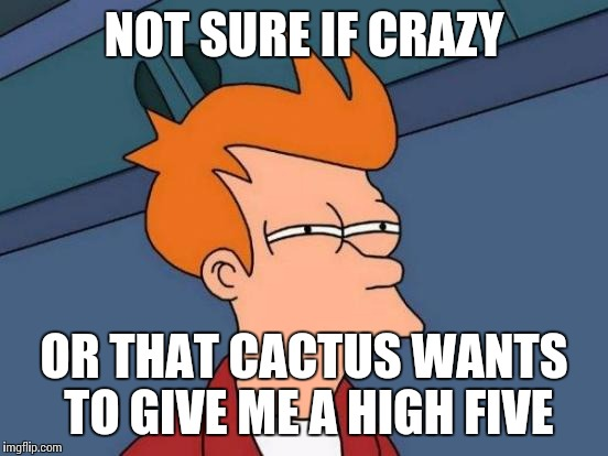 Futurama Fry Meme | NOT SURE IF CRAZY OR THAT CACTUS WANTS TO GIVE ME A HIGH FIVE | image tagged in memes,futurama fry | made w/ Imgflip meme maker