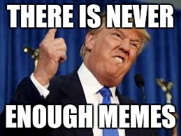THERE IS NEVER ENOUGH MEMES | image tagged in trump | made w/ Imgflip meme maker
