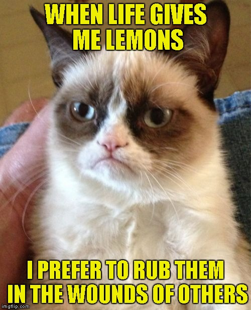 Grumpy Cat Meme | WHEN LIFE GIVES ME LEMONS I PREFER TO RUB THEM IN THE WOUNDS OF OTHERS | image tagged in memes,grumpy cat | made w/ Imgflip meme maker