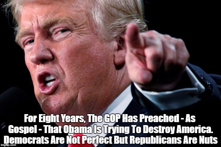 Democrats Are Not Perfect | For Eight Years, The GOP Has Preached - As Gospel - That Obama Is Trying To Destroy America. Democrats Are Not Perfect But Republicans Are N | image tagged in meme | made w/ Imgflip meme maker