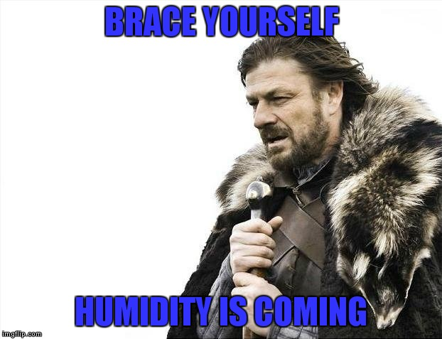 Brace Yourselves X is Coming Meme | BRACE YOURSELF HUMIDITY IS COMING | image tagged in memes,brace yourselves x is coming | made w/ Imgflip meme maker