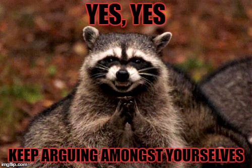 Evil Plotting Raccoon | YES, YES KEEP ARGUING AMONGST YOURSELVES | image tagged in memes,evil plotting raccoon,template quest,funny | made w/ Imgflip meme maker